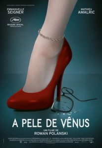 A Pele de Vênus - poster nacional