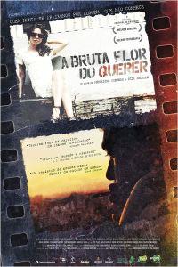 A Bruta Flor do Querer - poster nacional